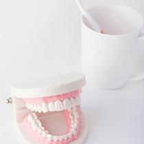 一般歯科から入れ歯までトータルサポート